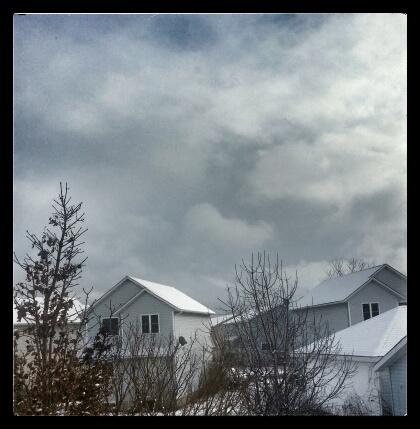 snow skies